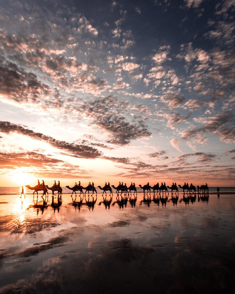 cable beach camels sunset broome